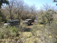 Rutas 4 x 4 para conocer el Parque Nacional de Cabañeros