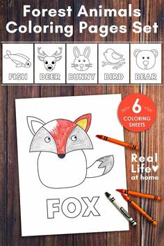 Forest Animals Coloring Pages Set - 6 pages of simple and linear coloring pages including fox, fish, deer, bunny, bird, and bear