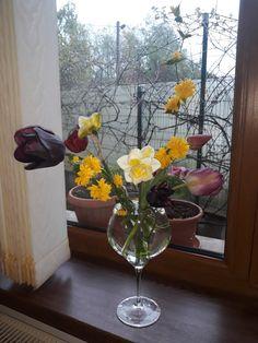Ikebana, Plants, Plant, Flower Arrangements, Planets