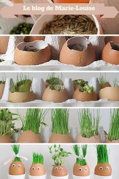 Original Easter decoration: eggs in grass - Ideas Jardinería - Dekoration Diy Crafts For Kids, Projects For Kids, Fun Crafts, Craft Ideas, Diy Projects, Project Ideas, Decor Ideas, Diy Osterschmuck, Easter Egg Crafts