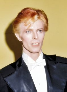 Bowie as Thin White Duke, icy-cool persona associated with album 'Station to Station' at annual Grammy Awards March, David Bowie Poster, David Bowie Art, David Bowie Ziggy, Angela Bowie, The Velvet Underground, Iggy Pop, Brixton, John Lennon, Freddie Mercuri