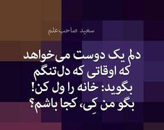 سعید صاحب علم