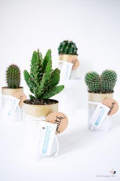 41 Besten Pflanzen Einrichten Und Wohnen Bilder Auf Pinterest