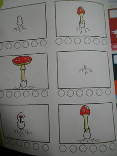 Werkblad logisch rangschikken: de paddenstoel (vakantieboek Averbode)
