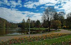 Ich bin gern im Garten.  ... Auch in größeren. Wie in Saarbrücken. Da schwimmwn sogar Schwäne, Enten und Gänse herum. Und Tretboote. :-)
