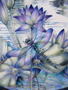 Dragonflies … how to paint them and what they mean! A new art class by Jody B … - Top 99 Pencil Drawings Silk Painting, Painting & Drawing, Dragonfly Art, Dragonfly Painting, Dragonfly Drawing, Oeuvre D'art, Art Techniques, Art Tutorials, Painting Inspiration