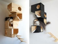 Katzenmöbel Design - lustige, kreative Katzenverstecke