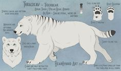 New Polartiger reference by Bear-hybrid Mythical Creatures Art, Mythological Creatures, Magical Creatures, Fantasy Creatures, Creature Concept Art, Creature Design, Creature Drawings, Animal Drawings, Fantasy Beasts