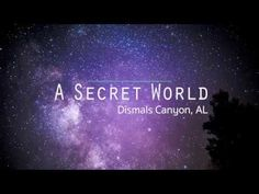 A Secret World: Alabama's Dismals Canyon