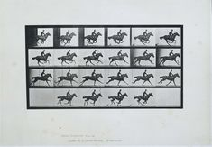 Het paard Bouquet in galop, Eadweard Muybridge, 1887