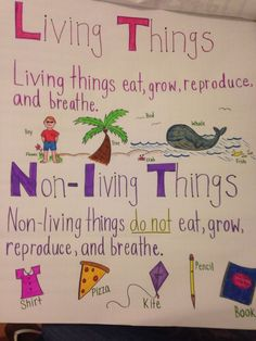 Living and Non-living anchor chart