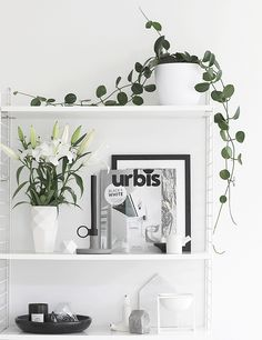 Urbis | The Black + White Issue