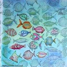 here fishy fishy #johannabasford #lostoceancoloringbook I used every medium I had on this I'm sure. An exercise in fun and wild abandon! #fabercastellpolychromos #panpastel #sukura #contepastelpencil #colorbookforadults #colorbook #colorbooking4adults #coloring #lostocean #lostoceanbook #lostoceanjohannabasford #lostoceans