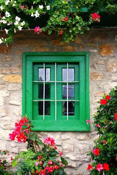 windows,Ahhh... the greens and the complementary reds...