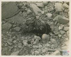 Dismembered corpse of an American soldier killed by a mine in the Vado Area in Italy on 20 April 1945. | The Digital Collections of the National WWII Museum : Oral Histories