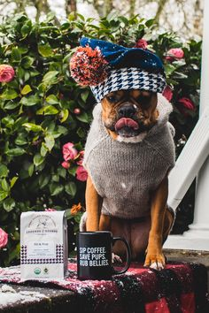 HOUNDSTOOTH DACHSHUND SAUSAGE DOGS GREY ORANGE DOUBLE 4 PIECE BEDDING SET