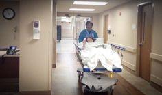 Joey surgery day-8