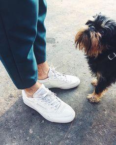"""(@reebokclassicpolska) na Instagramie: """"No weź, nie daj się prosić. Chodź na spacer w ulubionych klasykach Club C 👟🐕 @agnieszka_kulesza…"""" Reebok, Sneakers, Classic, Instagram Posts, Shoes, Fashion, Tennis, Derby, Moda"""