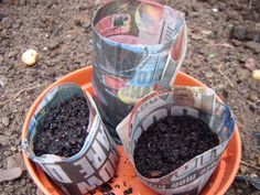 Homemade Biodegradable Seed Pots made from newspaper. Save money and plant on seedlings without disturbing the roots.