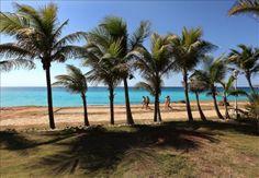 El balneario cubano de Varadero pierde entre 70 cm y un metro de línea de costa al año | USA Hispanic Press