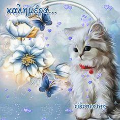 Όμορφη καλημέρα σε όλους με όμορφες eikones.top...! GIFs - eikones top Good Morning Quotes, Kittens, Hair, Beauty, Messages, Cute Kittens, Kitty Cats, Baby Cats, Kitten