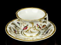 18th Century Doccia Porcelain Birds of Paradise Cup and Saucer