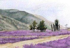 Lavender Fields in Mona, Utah - Amy Barnett watercolors