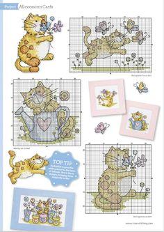 Kittie Cards