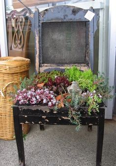 chair recycle planter idea