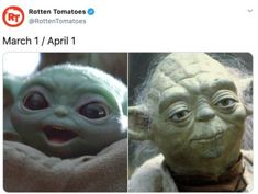 When you are still processing spring 2020 with yoda memes