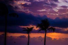 Tropical Caribbean Sunrise / Sunset Photo http://fineartamerica.com/featured/tropical-sunrise-sara-frank.html