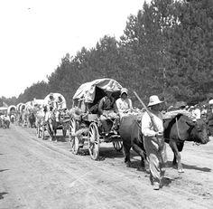 History inspiration: Oregon Trail wagon train with Conestoga wagons.
