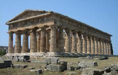 """Della famiglia dei carciofi di tipo """"romanesco"""", il Carciofo di Paestum IGP si differenzia dalle altre produzioni simili per la sua morfologia caratteristica e..."""