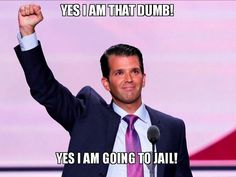 only time to agree with donny jr Joe Rogan, Donald Trump Jr, Political Quotes, Stupid People, So Little Time, Dumb And Dumber, Told You So, Politics, Jokes