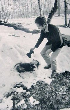 """rollingwithjudas: """"Bob Dylan playing with his dog in the snow. Bob Dylan, Big Blue Eyes, Music Magazines, Winter Photography, Art Photography, Woodstock, In This World, Dog Cat, Snow"""