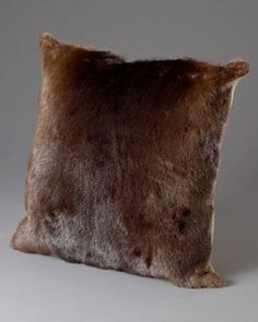 Real Beaver Fur Pillows - I've got the skins waiting for me, just need to sew them now...