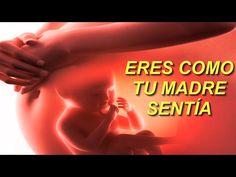 EJERCICIO SANACIÓN EMOCIONAL (El inconsciente de tu MADRE te programó en su vientre) - YouTube