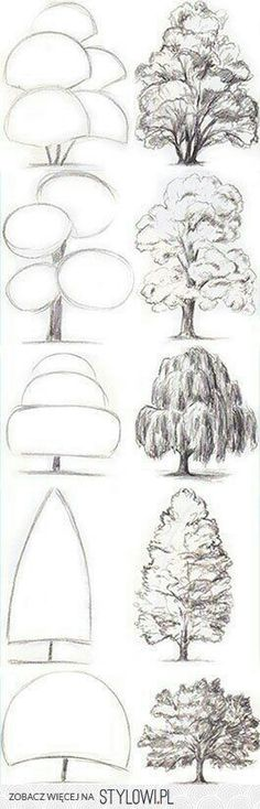 Картинка с тегом «drawing, tree, and art»