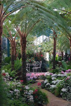 Beautiful Conservatory