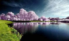 stunning natural photography1 1 Stunning Natural Mirrors Photography
