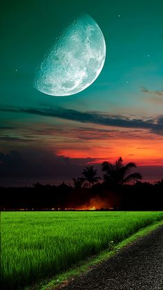 Moon And Sky Grass #iPhone #6 #wallpaper
