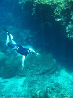 You'll find all sorts of strange creatures in the Blue Hole!