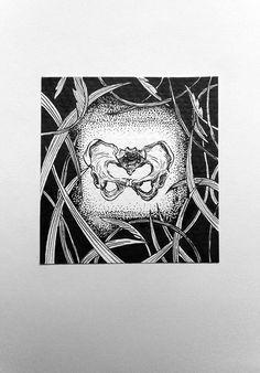 Pelvis bone on Behance Artworks, Behance, Names, Illustrations, Drawings, Projects, Log Projects, Blue Prints, Illustration