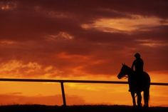 John Snell - Silhouette of Man on a Horse with Orange Sky
