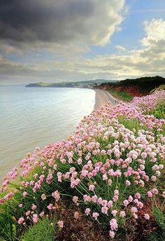 England Travel Inspiration - Devon, England
