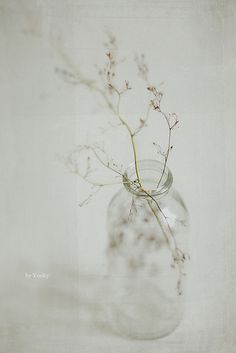 dried grass in an empty bottle or a beautiful decoration