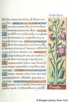 Book of Hours, MS M.732 fol. 13r - Images from Medieval and Renaissance Manuscripts - The Morgan Library & Museum