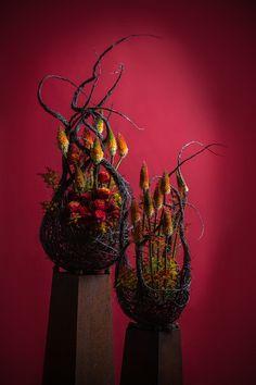 Gregor Lersch :: FDF - Fachverband Deutscher Floristen e. Art Floral, Floral Artwork, Floral Design, Oriental Flowers, Tropical Flowers, Ikebana, Modern Floral Arrangements, Corporate Flowers, Table Flowers