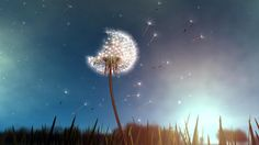 In this interaction design, the viewer interacts with the design by using tracking technology which tracks the movement of a manipulated hairdryer and allows the user to blow the seeds off the dandelion. It is a fun interaction rather than an educational one and allows the viewer to engage with an everyday object in a new way, providing an imaginative experience. I think that the interaction is for all ages as it is a simple yet well executed engaging design.