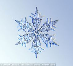 Beautiful - Magical Snowflakes Under the Microscope